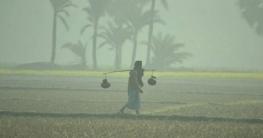 মঙ্গলবার থেকে আবারো তাপমাত্রা কমে নামতে পারে শীত
