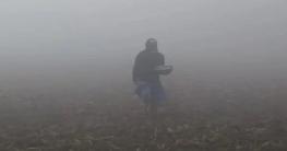 তেঁতুলিয়ায় ঘন কুয়াশায় জেঁকে বসেছে শীত